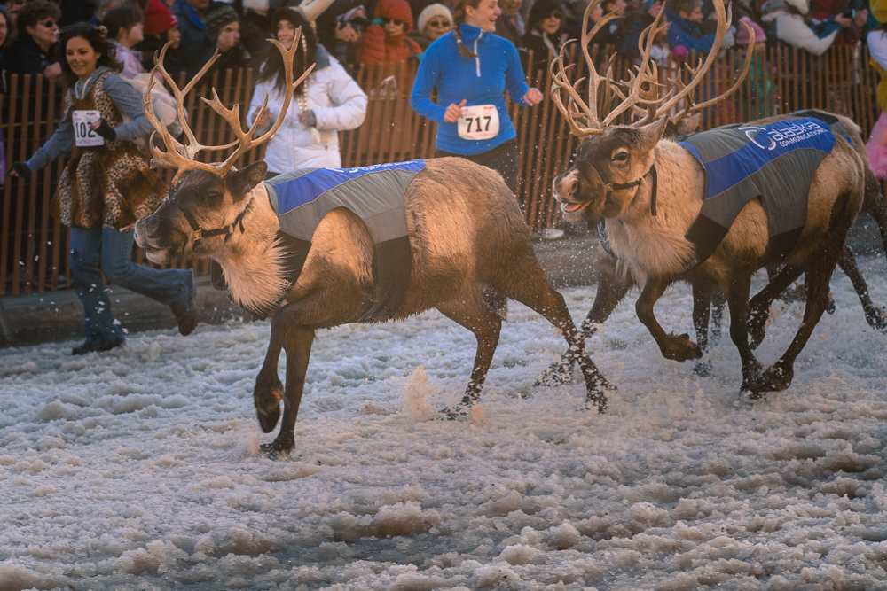 Running of the Reindeer – Anchorage, Alaska