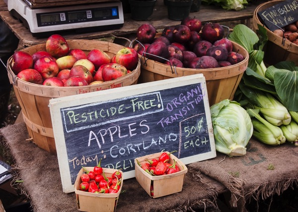 Coventry Farmer's Market – the best farmer's market in New England